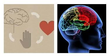 terapia-cognitiva